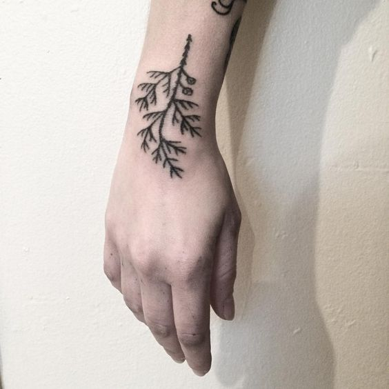 Cedar branch handpoke tattoo