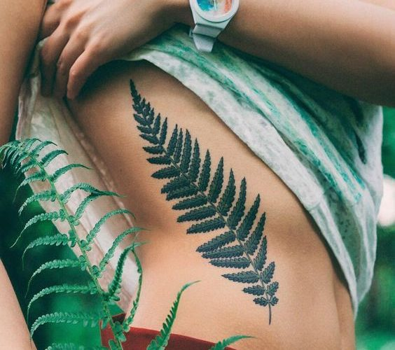 Fern Tattoo 43 Most Delicate And Creative Fern Tattoo Ideas Ever