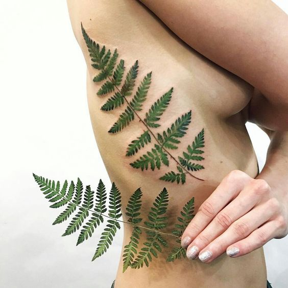 Another realistic green fern leaf tattoo on the right rib cage