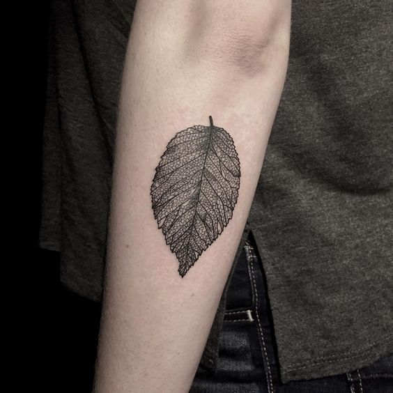 Decayed elm leaf tattoo on the arm