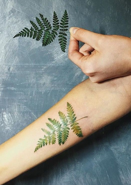Fern tattoo by rita kit