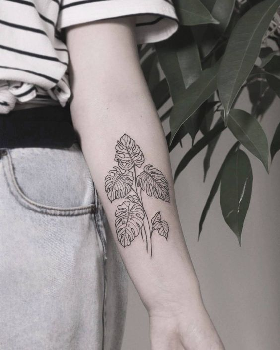 Outline monstera leaf tattoo on the inner arm
