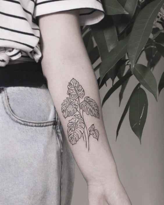 Outline monstera leaf tattoo on the inner arm