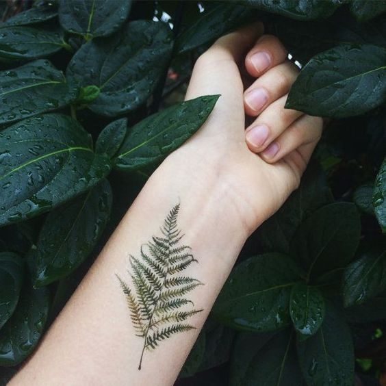 Watercolor realistic fern tattoo on the left inner wrist