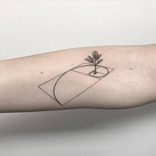 3d golden ratio tattoo with a plant