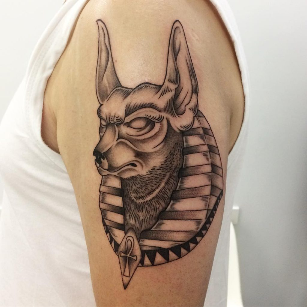 Head of anubis