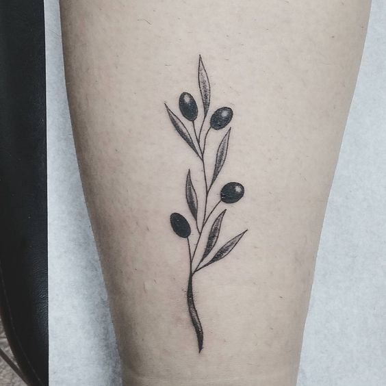 Simple and delicate olive twig