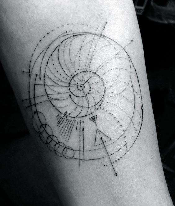 Stylized fibonacci spiral tattoo by dr. woo