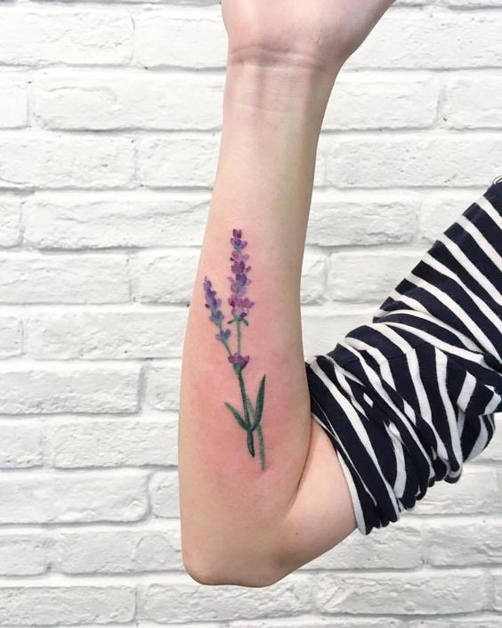 Watercolor lavender tattoo on the right forearm