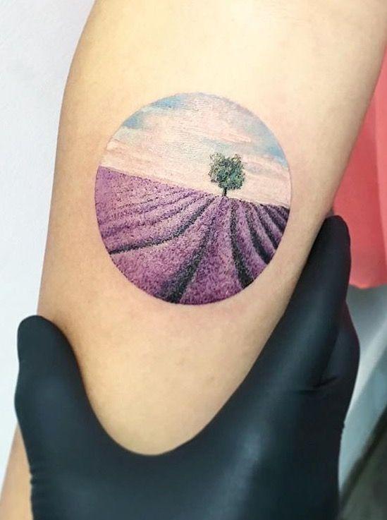 Circular lavender fields
