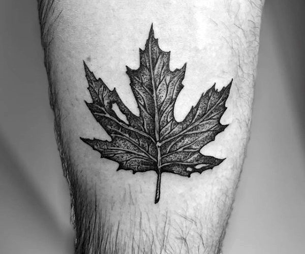 Detailed maple leaf