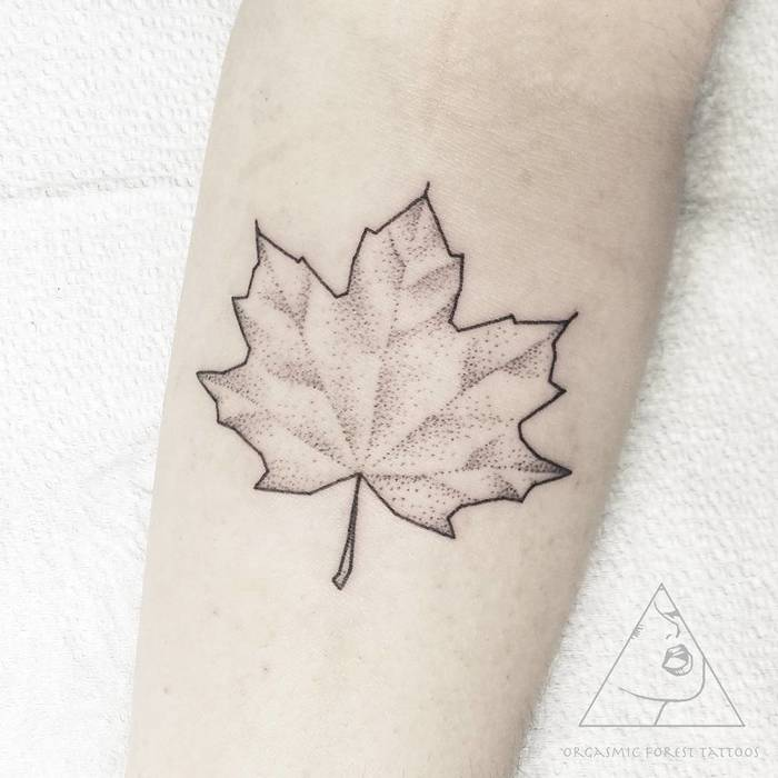 Dotwork style outline maple leaf
