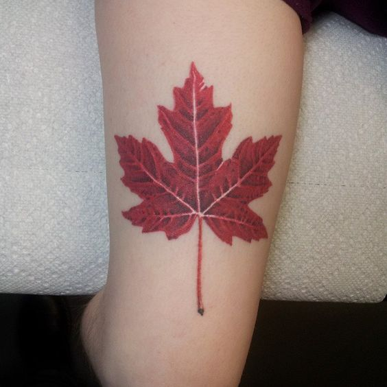 Red maple leaf tattoo