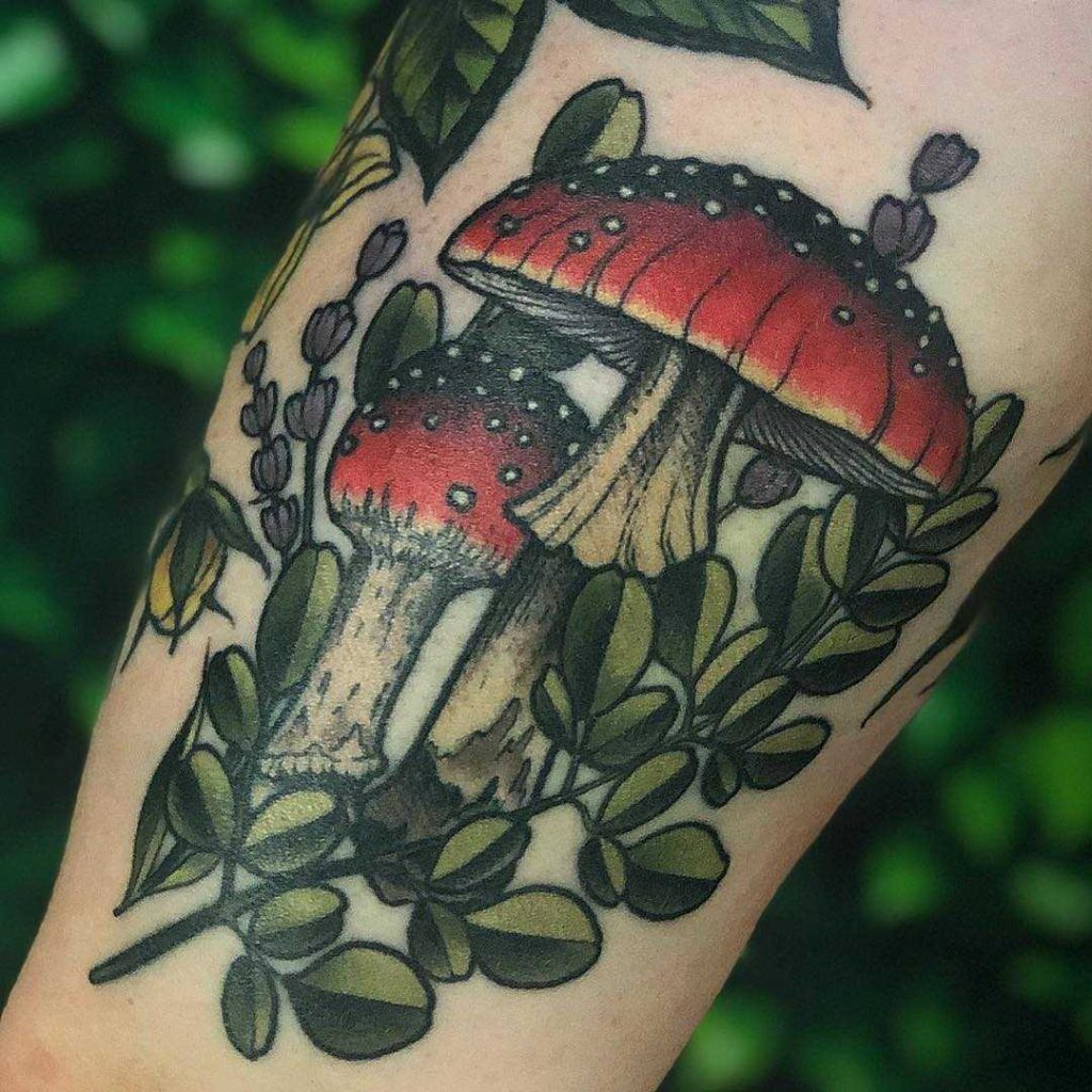 Amanita muscaria mushroom by Lindsee Boyer