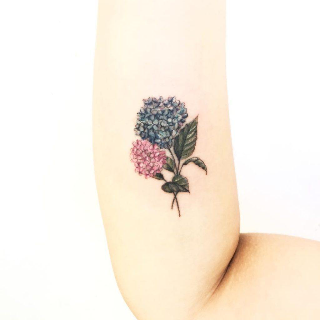 Bouquet of hortensias