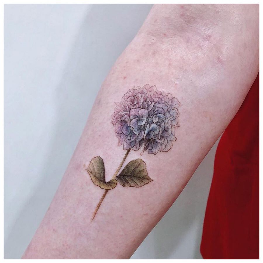 Delicate hydrangea on a forearm