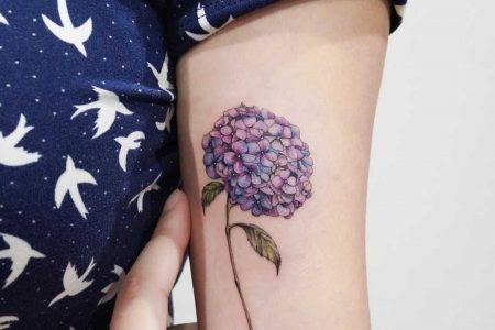 Hydrangea tattoo – meanings and most beautiful ideas